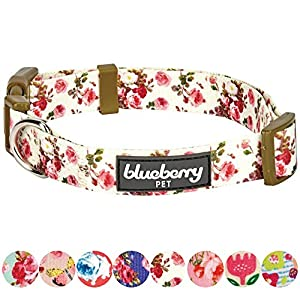 """Blueberry Pet 8 Patterns Spring Scent Inspired Pink Rose Print Ivory Dog Collar, Small, Neck 12""""-16"""", Adjustable Collars for Puppies & Small Dogs"""