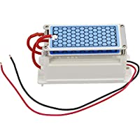 ATWFS Ceramic Ozone Generator 110V 10g/H Double Ceramic Plate Air Purifier Ozonizer