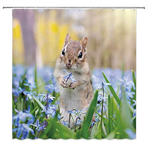 Flowers Squirrel Proof (AshasdS Shower Curtain,Natural Bath Curtain Cute Squirrel Purple Flowers and Green Leaves Design Curtain Polyester Waterproof Fabric with 12 Rust Proof Hooks,66 X 72 Inches)