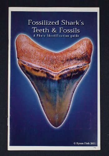 Fossilized Shark's Teeth & Fossils: A Photo Identification Guide