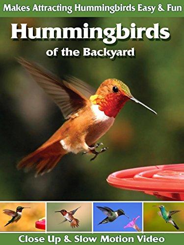 Hummingbirds of the Backyard ()