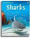 Sharks (Usborne Discovery)