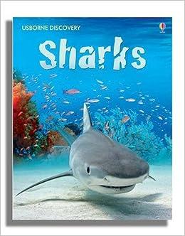 Book Sharks (Usborne Discovery)