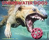 Underwater Dogs 2015 Wall Calendar