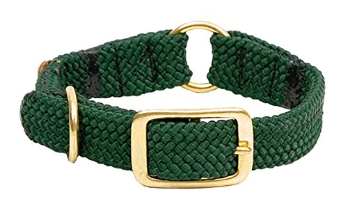 ing Dog Collar, Hunter Green, 1 x 18-Inch ()