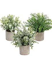 Homcomoda Artificial Potted Plants Faux Eucalyptus Greenery in Pots Decorative Plant for Tabletop Décoration (3 Pack)