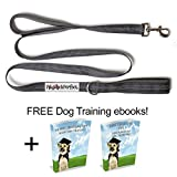 Pooch Perfect Double Dual Handle 5ft Nylon Dog Leash Lead in Grey | Triple Reflective Stitching for Walking at Night | Heavy Duty and Lightweight for Medium to Large Dogs | Traffic Leash | Training and Obedience