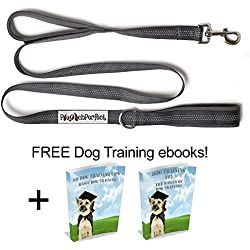 Pooch Perfect Double Dual Handle 5ft Nylon Dog Leash Lead in Grey | Triple Reflective Stitching for Walking at Night | Heavy Duty and Lightweight for Medium to Large Dogs | Traffic Leash | Training