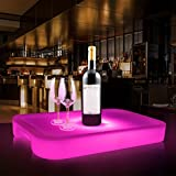 Augrous LED Serving Trays Plastic Rectangle 16 Colour Change Rechargeable Remote Glowing Tray for Party Bar with Handle (Color : Large)