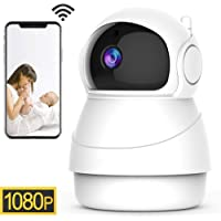 1080P Wireless Security IP Camera WiFi 2.4G Surveillance Camera for Pet Baby Elder Home Monitor,3D Navigation Panorama View,Pan/Tilt,Two-Way Audio,Night Vision,Motion Detection,Cloud Storage(EC50)