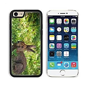 Rabbit Hare Grass Lie Hide Apple iPhone 6 TPU Snap Cover Premium Aluminium Design Back Plate Case Customized Made to Order Support Ready Liil iPhone_6 Professional Case Touch Accessories Graphic Covers Designed Model Sleeve HD Template Wallpaper Photo Jacket Wifi Luxury Protector Wireless Cellphone Cell Phone
