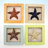 4 Resin Starfish Shadow Boxes