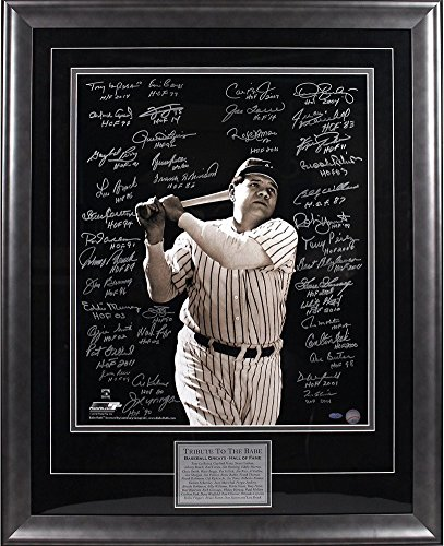 Baseball Greats Multi Autographed/Inscribed Vertical 20x24 Photo of Babe Ruth Batting 39 Sigs Elite Framed - Authentic (Elite Gift Certificates)