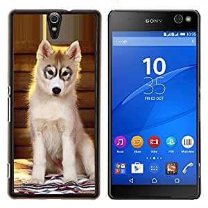 YiPhone /// Prima de resorte delgada de la cubierta del caso de Shell Armor - Perrito del perro esquimal de Alaska Perro del Malamute - Sony Xperia C5 Ultra