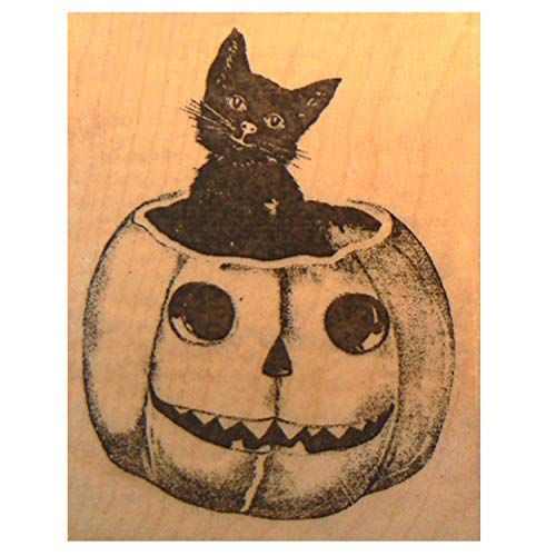 (Halloween Rubber Stamp cat in Pumpkin P16)