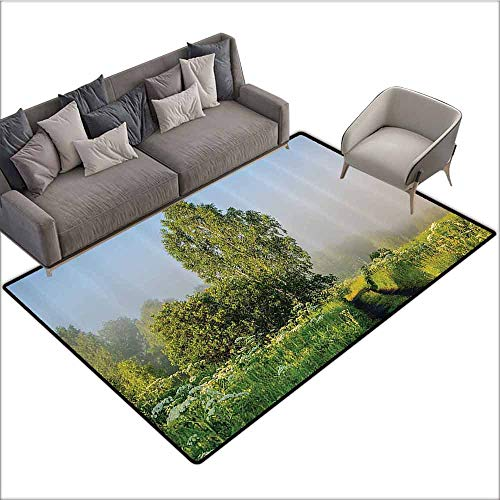 Bathroom Floor mats Nature Decor,Beautiful Serenity Trees Track Path Garden Leaves and Grass Sunny Skies Photography,Green 60