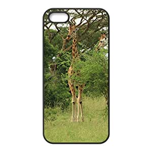Giraffe Hight Quality Plastic Case for Iphone 5s