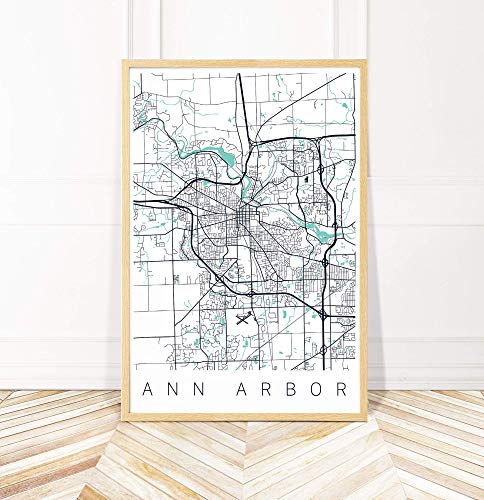 (Ann Arbor Michigan Map Art Print - Series II)