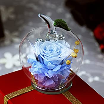 DeFancy Handmade Preserved Flowers Rose Decor With Apple Shaped Glass Best Gift For Valentines