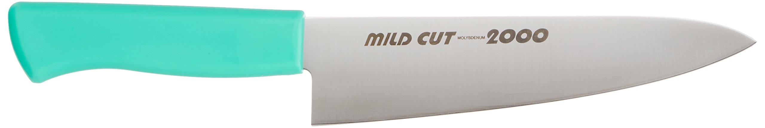 EBM MILD CUT-2000 color knife Gyuto MCG 18cm Green