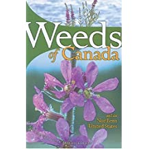 Weeds of Canada and the Northern United States: A Guide for Identification: Written by France Royer, 1999 Edition, Publisher: Lone Pine Publishing [Paperback]