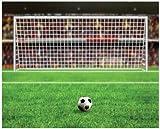 JP London MD4A139 10.5-Feet Wide by 8.5-Feet High Huge Soccer Net Penalty Kick Winner Removable Full Wall Mural