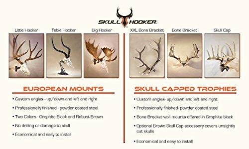 Trophy Tree European Trophy Mount by Skull Hooker – Hang up to 5 Deer Antlers and other Skulls for Display – Graphite Black by Skull Hooker (Image #8)