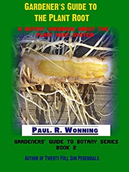 a definition of root systems in botany The taproot system contrasts with the adventitious or fibrous root system of plants with many branched roots, but many plants that grow a taproot during germination go on to develop.