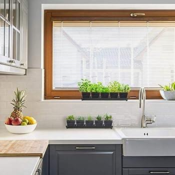 Window Garden Kit 10 Culinary Herbs Indoor Organic Herb Growing Kit Kitchen Apartment Windowsill Growing Starter Kit Easily Grow 10 Herbs Plants From Seeds Gardening Gifts For Women