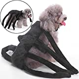 Pet Costume Halloween Spider Costume For Dogs 2 Pet Spider Costume Deal (Small Image)