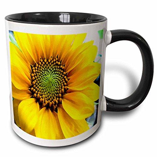 3dRose mug_62400_4