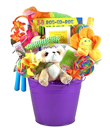 Playtime Gift Basket for Kids with Chihuahua Webkinz | Great Easter or Birthday Gift Idea for Boys or Girls