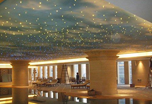 16w Fiber Optic Light Set for Bar Hotel Living Room Bedroom House Decoration by Eric Electronics (Image #4)