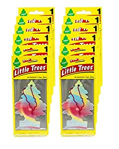 Little Trees Car Freshner 12 in 1 Bundle - Cotton