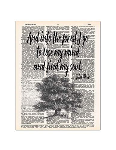Nature Art Print Poster - Into the Forest, John Muir Nature Quote, Dictionary Page Art Print, 8x11 UNFRAMED