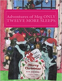 Adventures of Meg Only Twelve More Sleeps