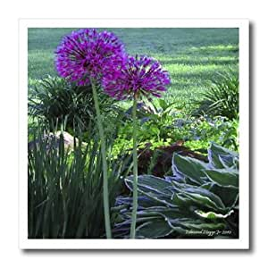 ht_13680_1 Edmond Hogge Jr Floral - Alliums - Iron on Heat Transfers - 8x8 Iron on Heat Transfer for White Material