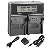 Kastar LCD Dual Smart Fast Charger for Panasonic VW-VBN260, VBN260 and Panasonic HC-X800, HC-X900, HC-X900M, HC-X910, HC-X920, HC-X920M, HDC-HS900, HDC-SD800, HDC-SD900, HDC-TM900 Camcorder