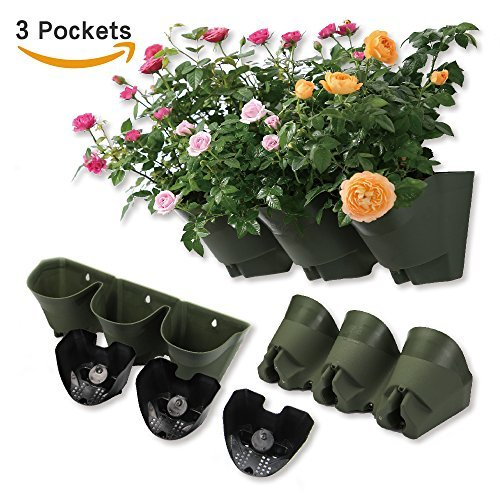 Worth Garden Olive Green Self-Watering 1 Set - 3 Pockets Vertical Wall Garden Planters by Worth