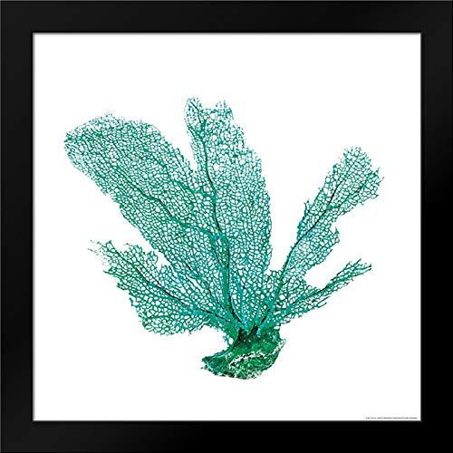 (Green Sea Fan Framed Art Print by Brando, JJ)
