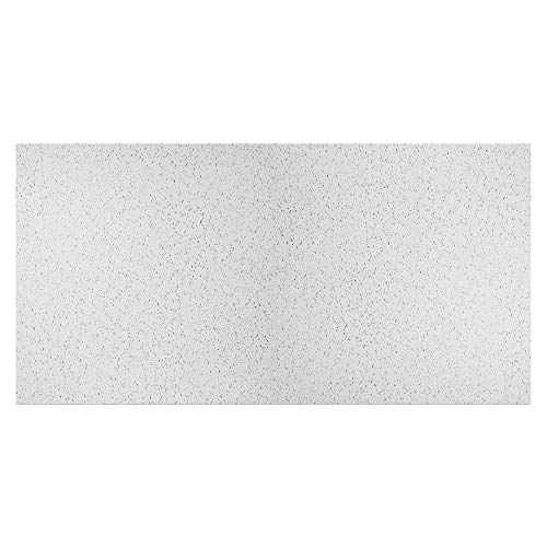 Genesis 2ft x 4ft Printed Pro Ceiling Tiles - Easy Drop-In Installation - Waterproof, Washable and Fire-rated - High-Grade PVC to Prevent Breakage (One Tile)