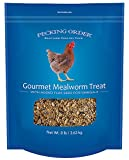 Pecking Order Gourmet Mealworm Treat, 8 lb