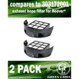 2 Pack Exhaust HEPA Filter for Hoover T Series Windtunnel Vacuum Cleaners (compares to 303172001). Genuine Green Label Product.