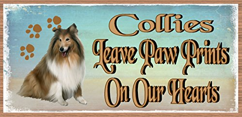 Collies Leave Paw Prints on Our Hearts