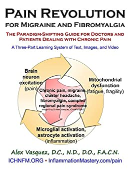 Pain Revolution for Migraine and Fibromyalgia: A Three