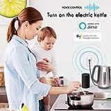 TOPGREENER Smart Plug with Energy