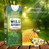 wax green bee propolis - Official distributor - 1 Bottle Wild Apiary Green Bee Propolis Liquid Glycolic Extract-Alcohol Free, Wax Free, Sugar Free