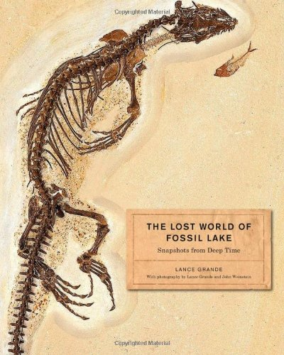 The Lost World of Fossil Lake: Snapshots from Deep - In Store Chicago Fossil