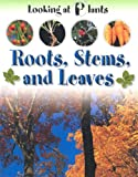 Roots, Stems and Leaves, Sally Morgan, 1931983119