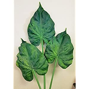 Meide Group USA Real Touch Latex Artificial Giant Taro Elephant's Ear Leaf Greenery Topiary Plant (Alocasia Macrorrhizos) (Pack of 3) 23